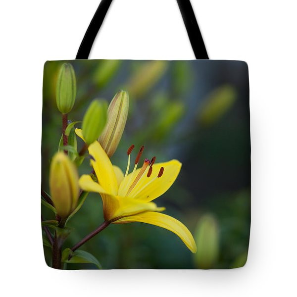 Morning Lily Tote Bag by Mike Reid