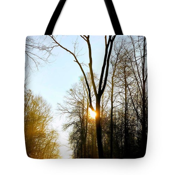 Morning Mood In The Forest Tote Bag