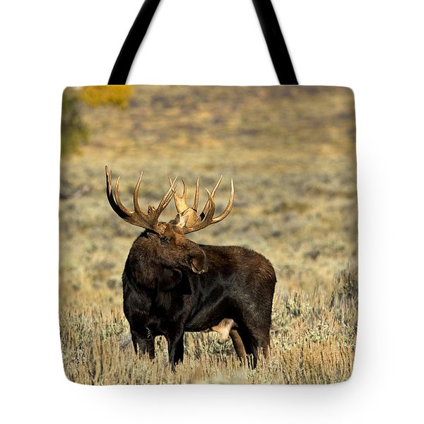 Morning Moose Tote Bag