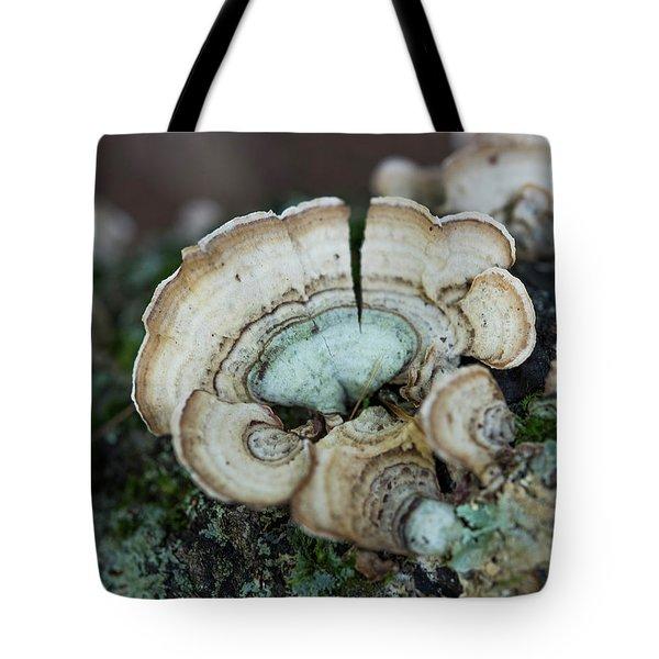 Morning Mushroom Tote Bag