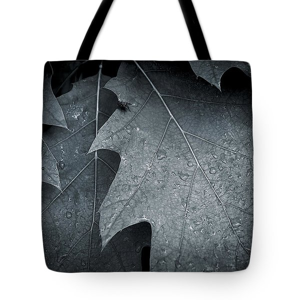 Morning Oak Tote Bag