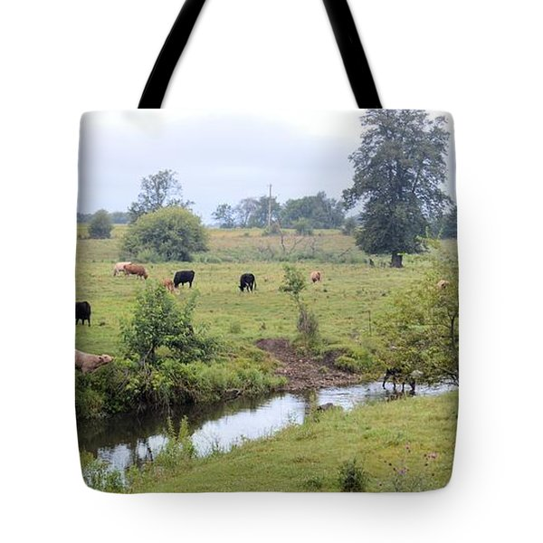 Morning On Coldwater Tote Bag