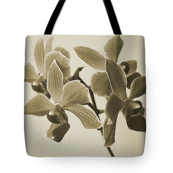 Morning Orchid Tote Bag by Ben and Raisa Gertsberg