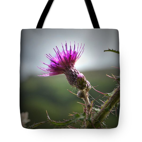 Morning Purple Thistle. Tote Bag by Terence Davis