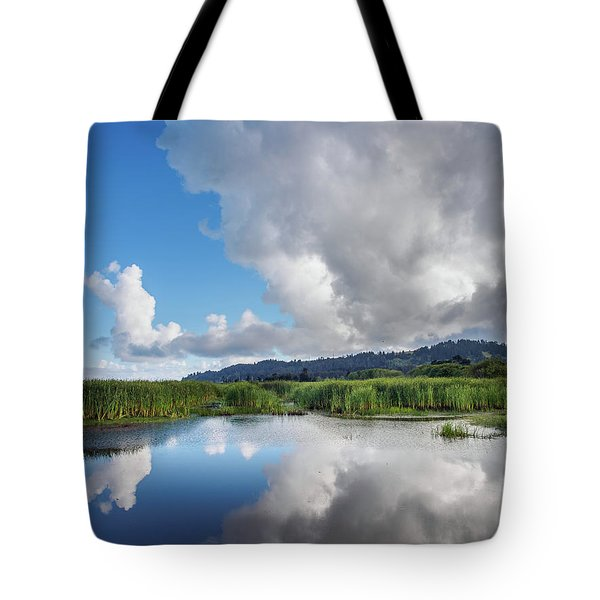 Tote Bag featuring the photograph Morning Reflections On A Marsh Pond by Greg Nyquist