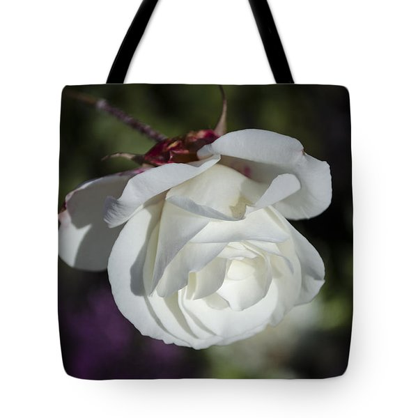 Morning Rose Tote Bag