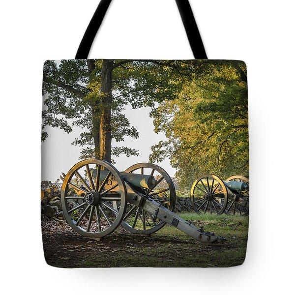 Morning Sentinel Tote Bag