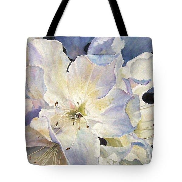 Morning Shadows   Sold Prints Available Tote Bag