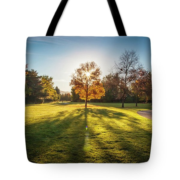 Tote Bag featuring the photograph Morning Shadows by Mark Mille