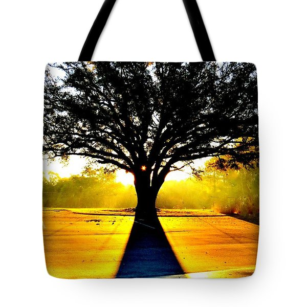 Morning Shadows Tote Bag by Tim Townsend