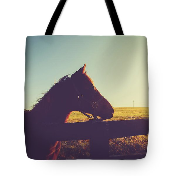 Tote Bag featuring the photograph Morning  by Shane Holsclaw