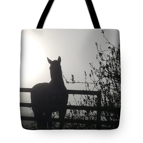 Morning Silhouette #1 Tote Bag