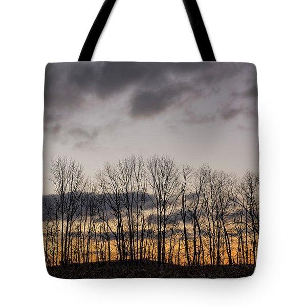 Morning Sky Tote Bag by Nicki McManus