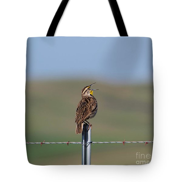 Morning Song Of A Meadowlark Tote Bag