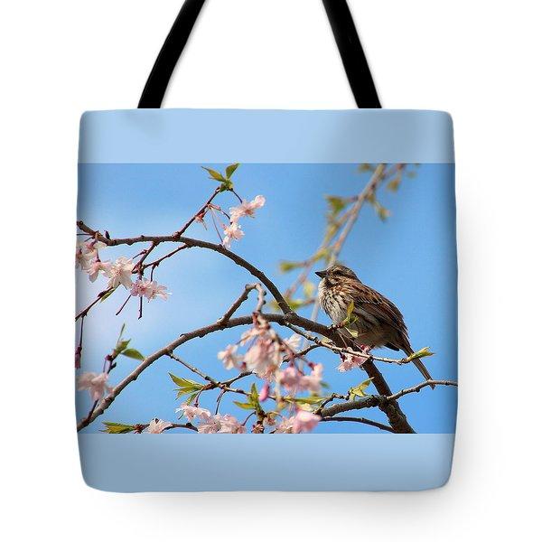 Morning Song Sparrow Tote Bag by Rosanne Jordan