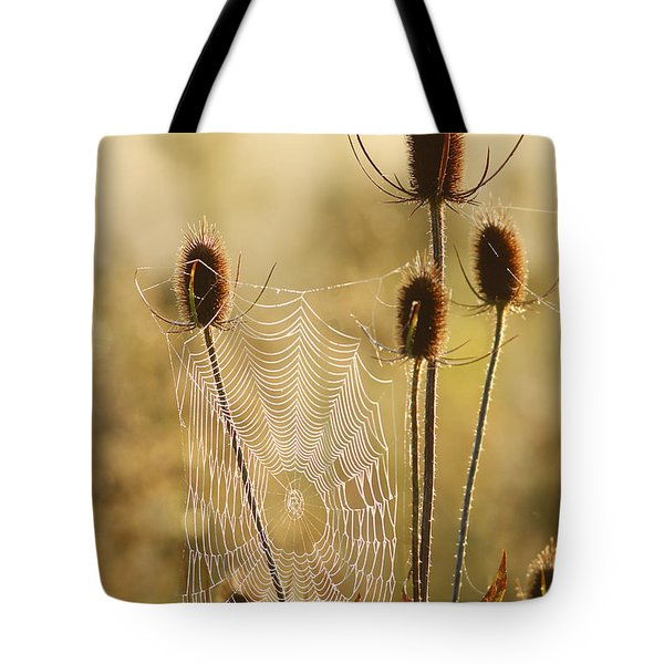 Morning Spider Web Tote Bag