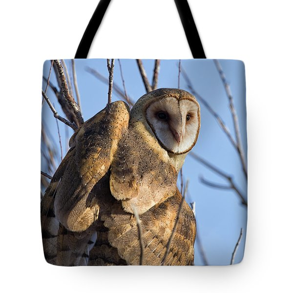 At The Dawning Of The Day Tote Bag