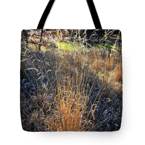 Morning Sun Backlights Fall Grasses In Glacial Park Tote Bag