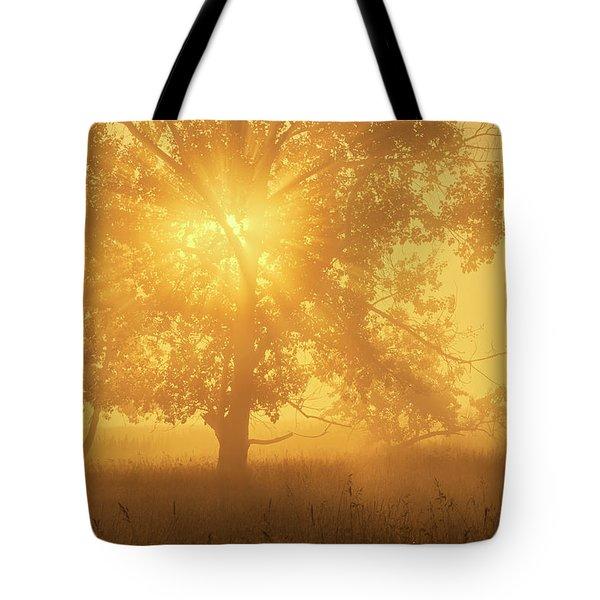 Morning Sun Tote Bag