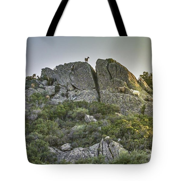 Morning Sun Lit Rocky Hill Greece Tote Bag