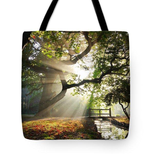 Morning Sunrise In Hampden Park Tote Bag