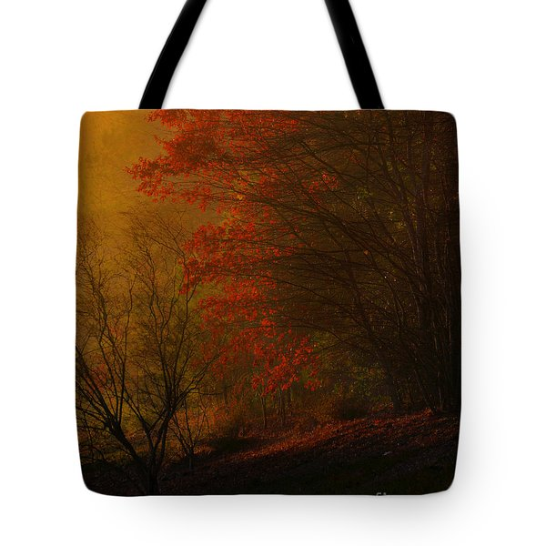 Morning Sunrise With Fog Touching The Tree Tops In Georgia. Tote Bag