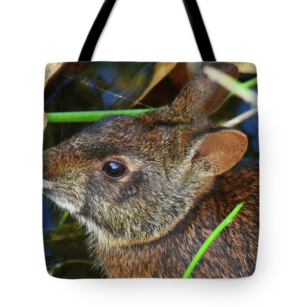 Tote Bag featuring the photograph Morning Swim by Sally Sperry
