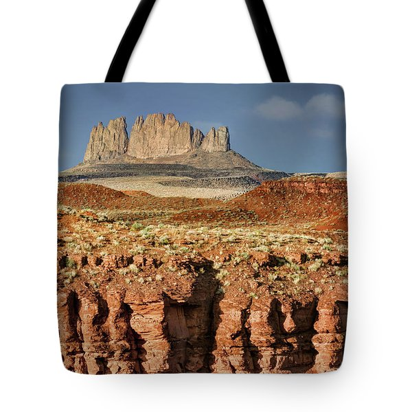 Tote Bag featuring the photograph Morning View by Nikolyn McDonald