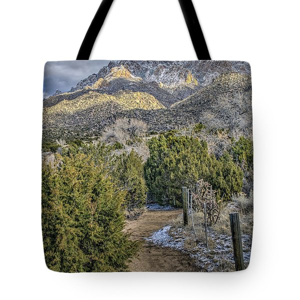 Tote Bag featuring the photograph Morning Walk by Alan Toepfer