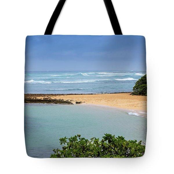 Morning Walk Tote Bag by Jon Burch Photography