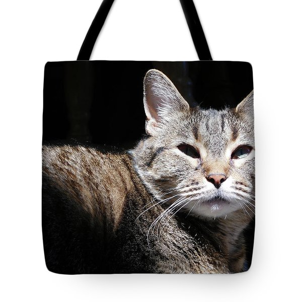Morning Warmth Tote Bag