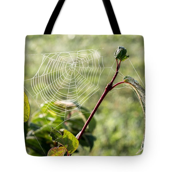 Morning Web #1 Tote Bag