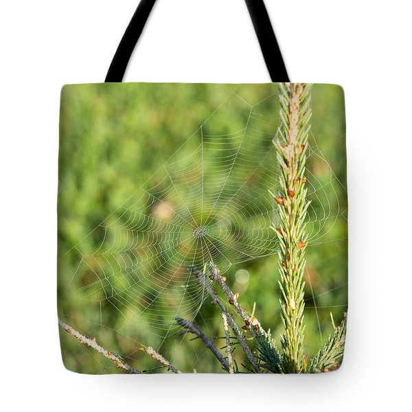 Morning Web #2 Tote Bag