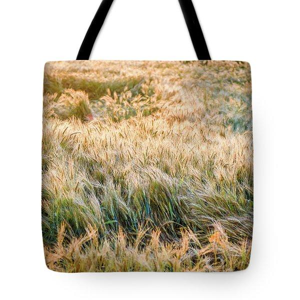 Morning Wheat Tote Bag