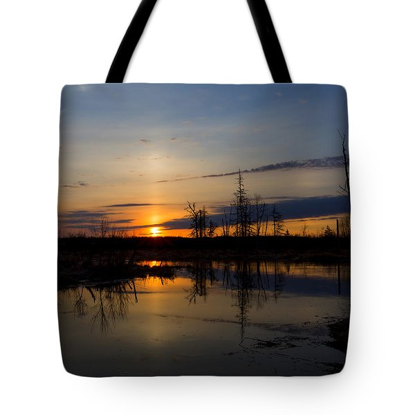 Tote Bag featuring the photograph Morning Wilderness by Gary Smith