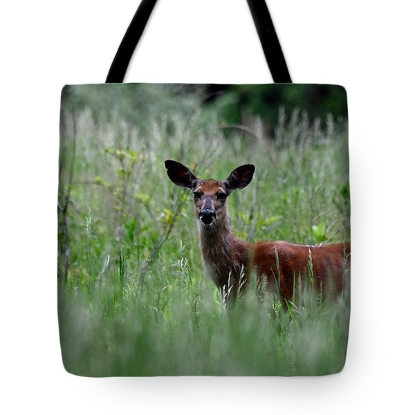 Morninng Deer Tote Bag