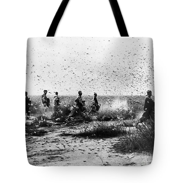 Morocco: Locusts, 1954 Tote Bag by Granger
