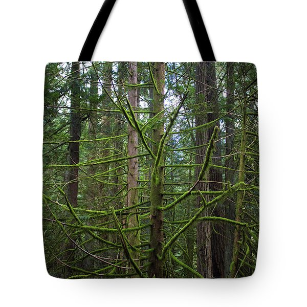 Moss Covered Tree Tote Bag