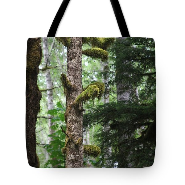 Moss-draped Trees On Tiger Mountain Wt Usa Tote Bag by Christine Till