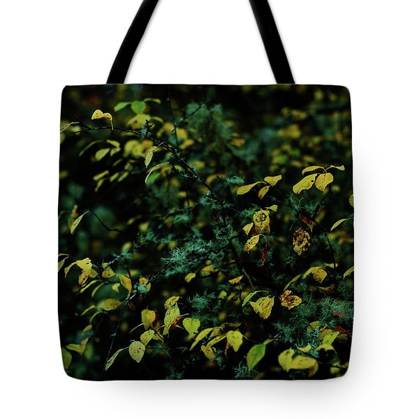 Moss In Colors Tote Bag