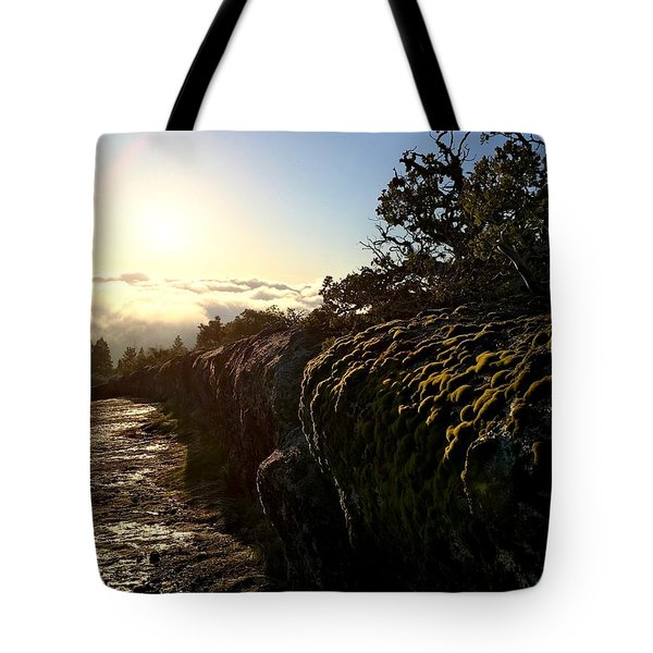 Tote Bag featuring the photograph Moss Landing by Paul Foutz