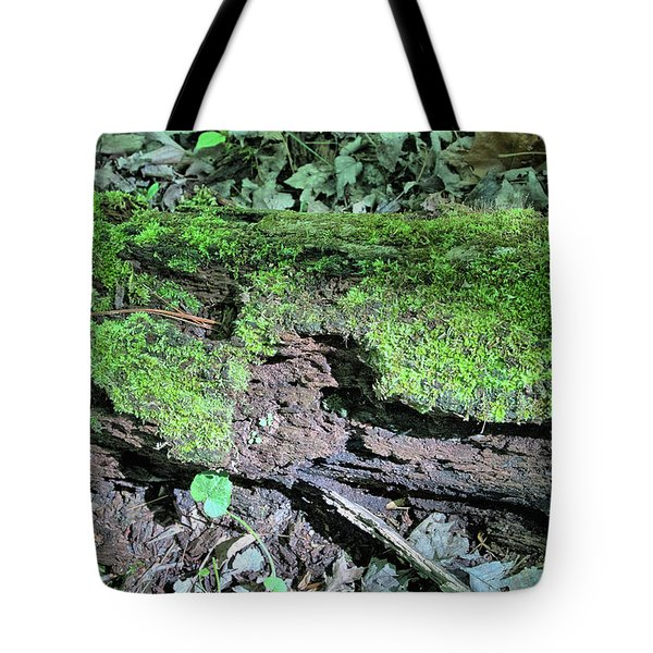 Tote Bag featuring the photograph Moss On A Log 2 by Richard Goldman