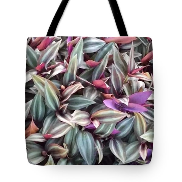 Tote Bag featuring the photograph Moss With Burgandy   by Cindy Charles Ouellette