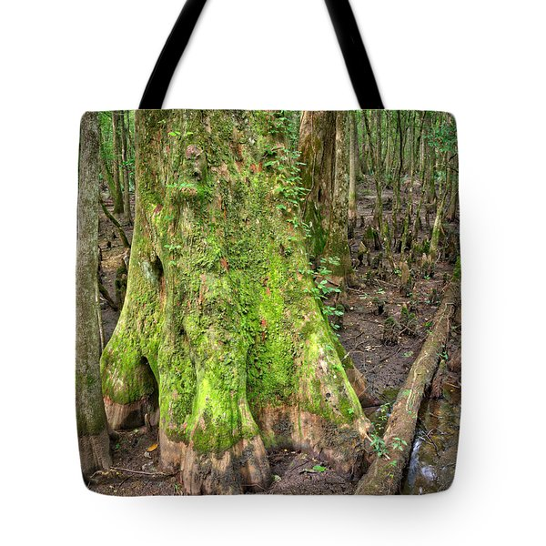 Mossy Cypress Tote Bag