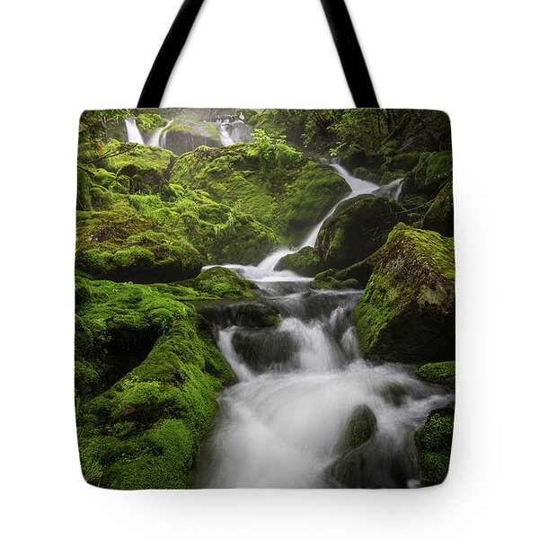 Mossy Fall #3 Tote Bag