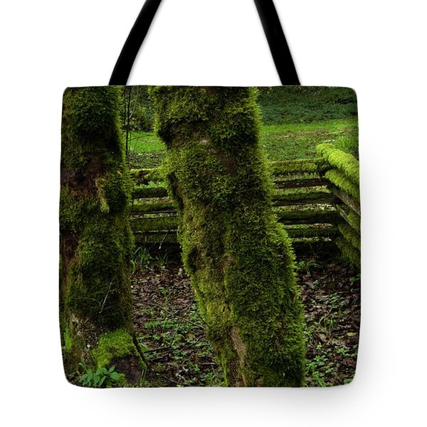 Mossy Fence Tote Bag by Bob Christopher