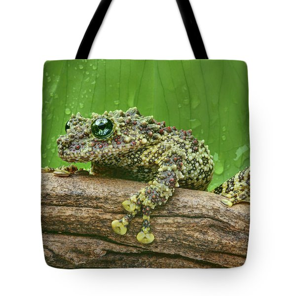 Tote Bag featuring the photograph Mossy Frog by Nikolyn McDonald
