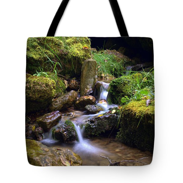 Mossy Glenn Spring 2 Tote Bag by Bonfire Photography