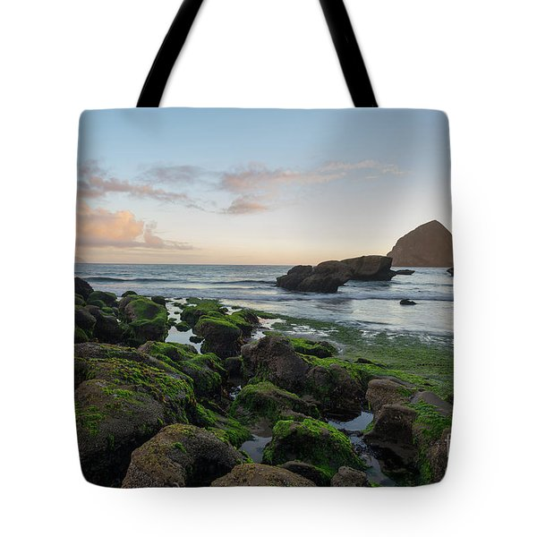 Mossy Rocks At The Beach Tote Bag
