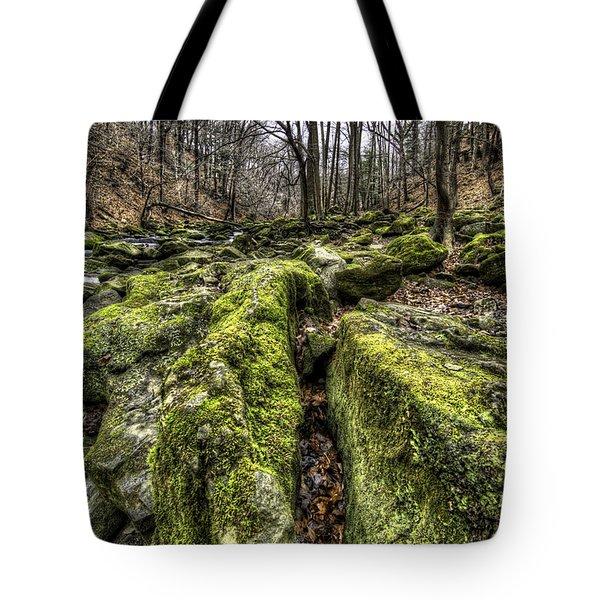 Mossy Trail Tote Bag